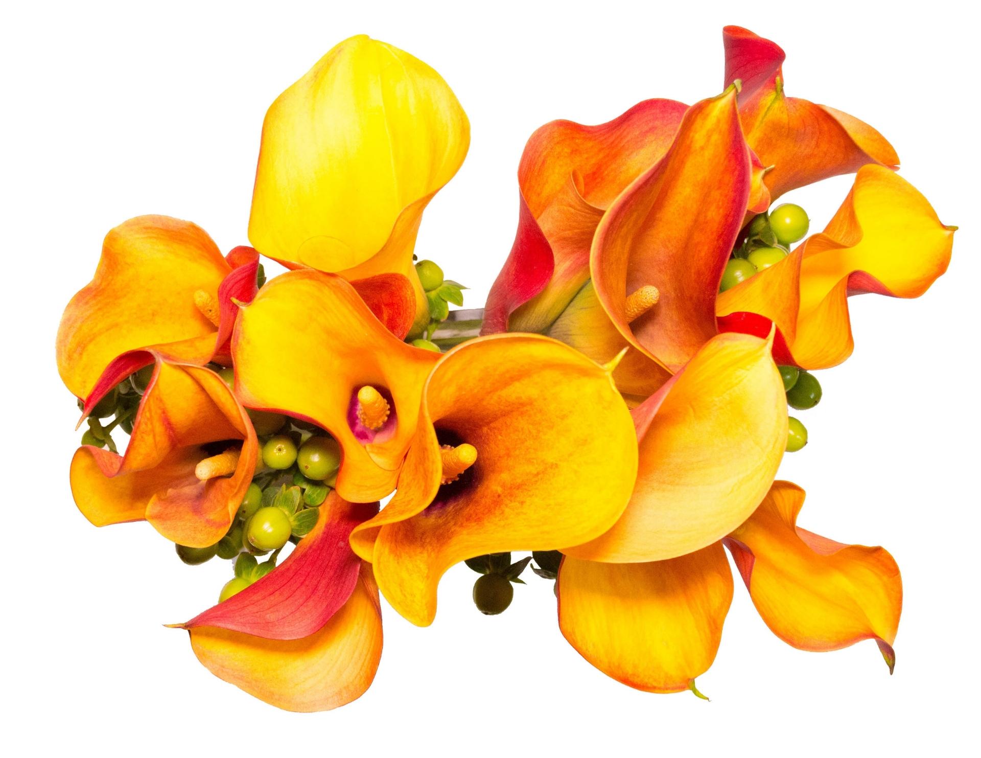 Florals-21New.jpg
