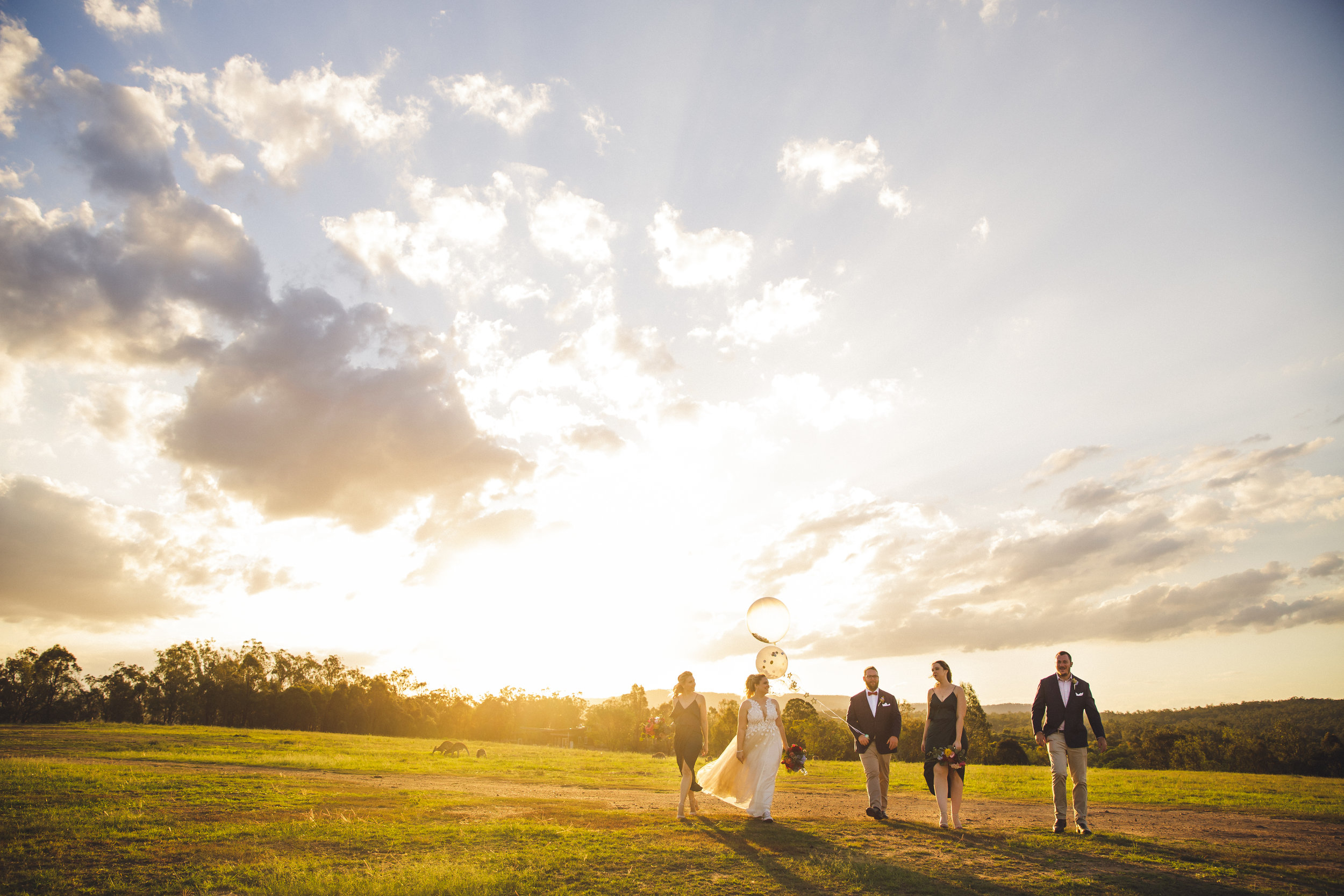 Bridal party walking through field at Spicers Hiddenvale