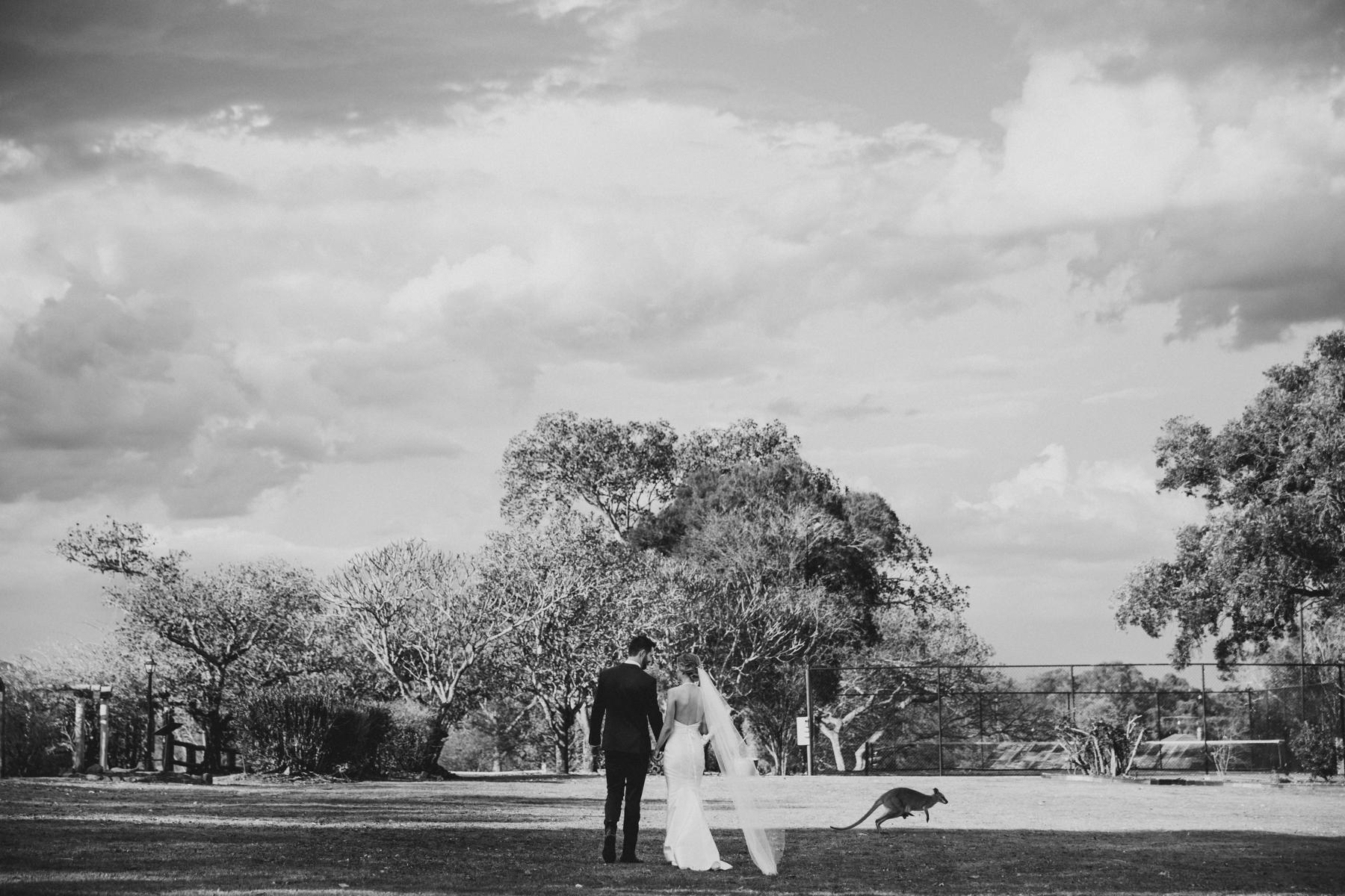 Spicers Hiddenvale Wedding Photographer