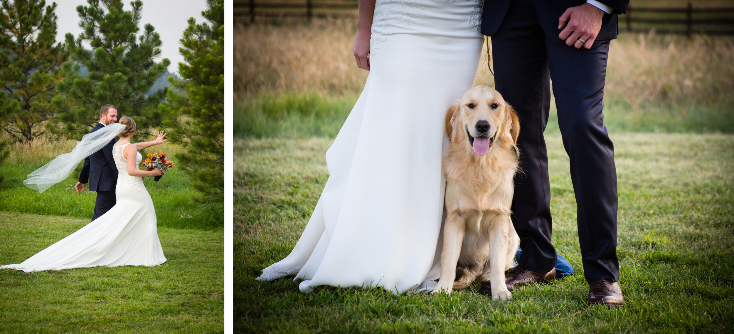 When you marry your best friend, you get to compare bling afterwards. And who could resist Barley? Definitely the most handsome four-legged child you could ask for!