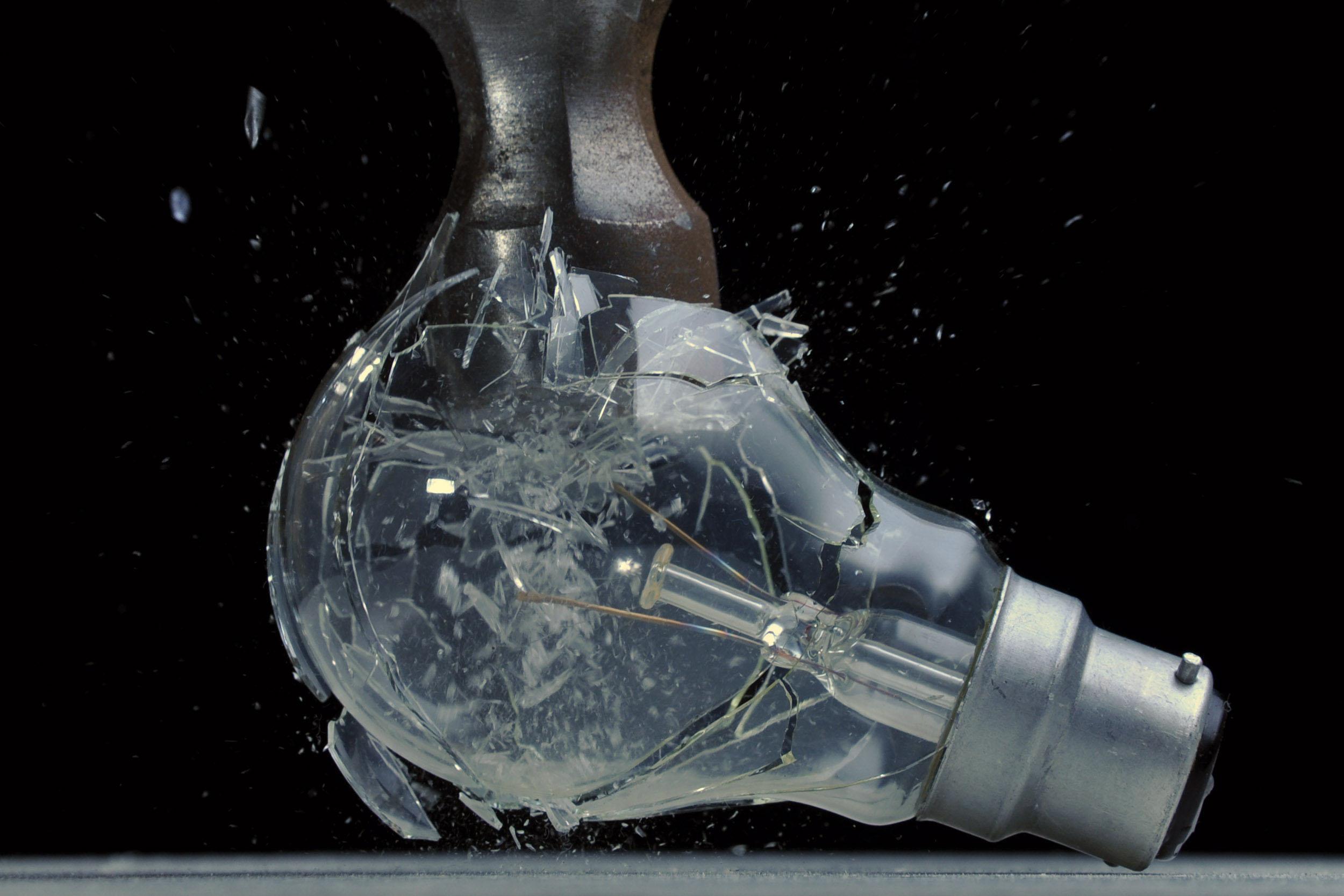 bulbsmash.jpg