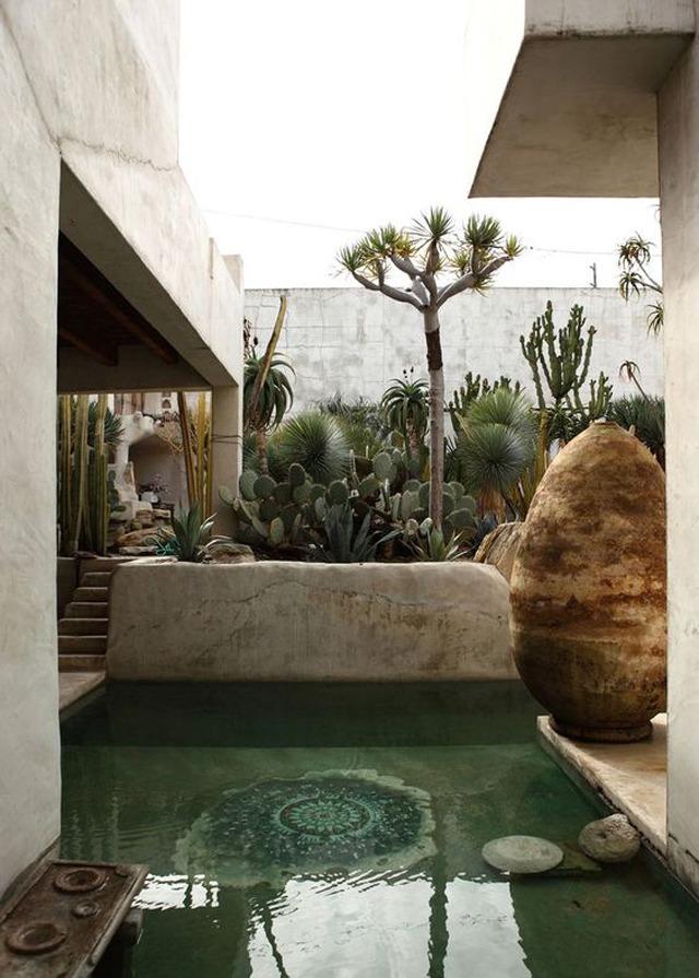cacti pool via  georgia design