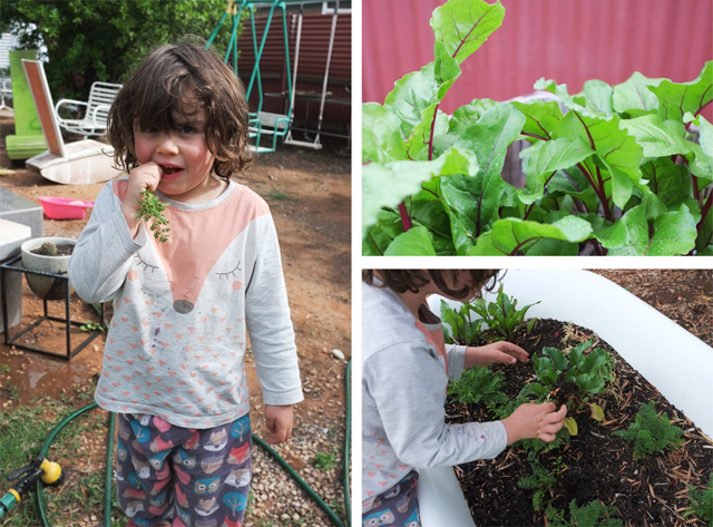 Girl in the Pjs Gardening with Kids