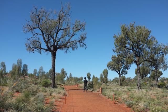 Girl in the Pjs Uluru Picnic Day Weekend