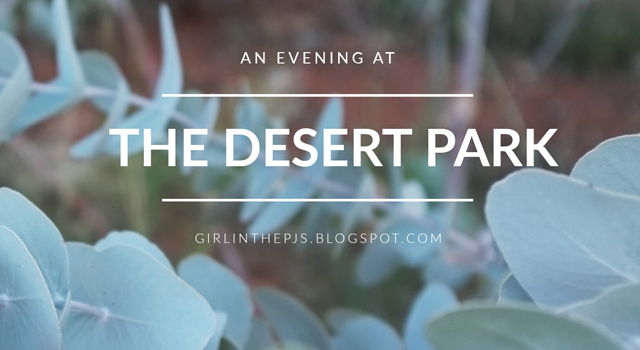 An Evening at the Desert Park