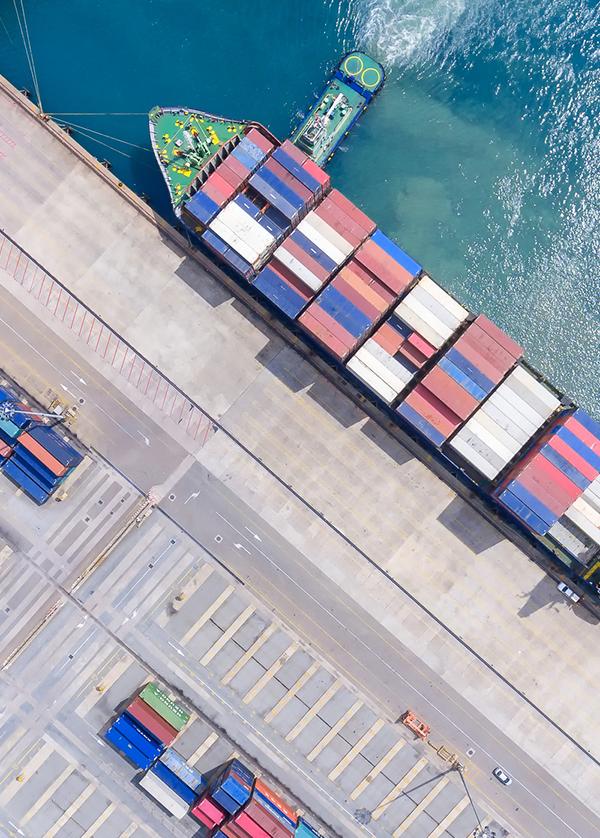High impact supply chains -