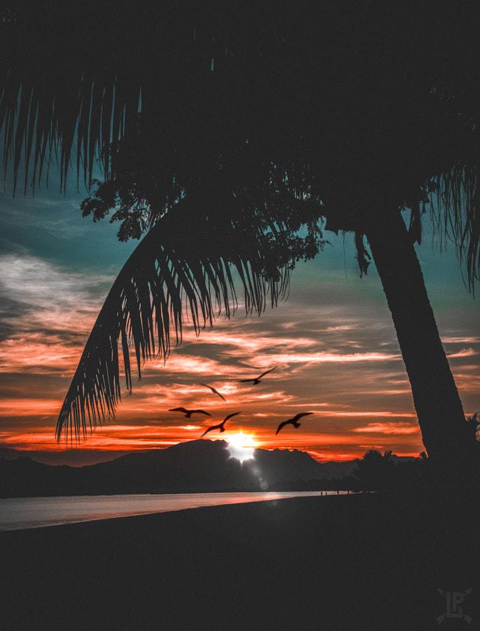Summer sunrise.