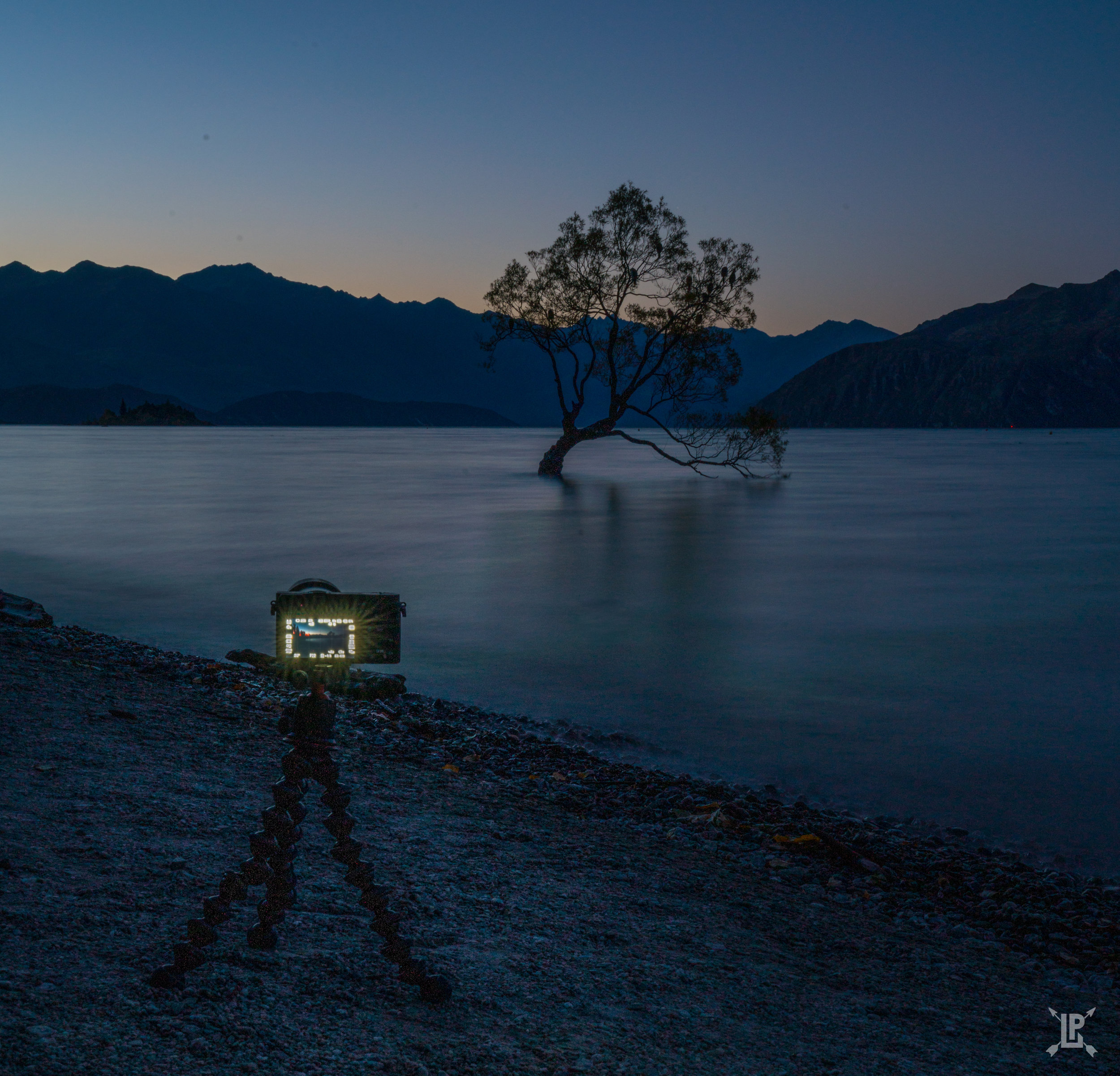 Using the  Joby Tripod  to shoot the Wanaka Tree in New Zealand