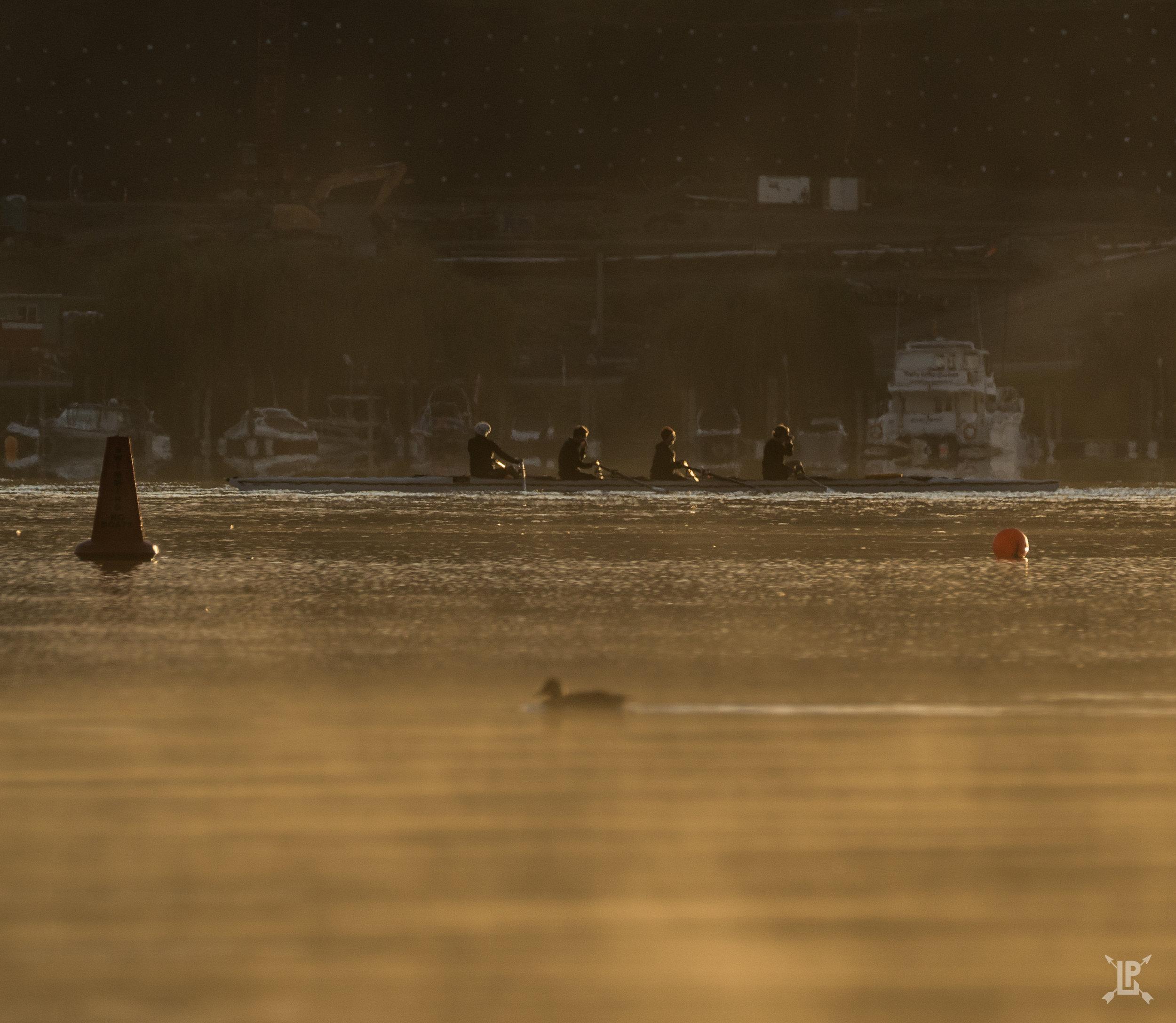 Boat crew racing a duck