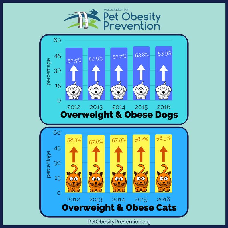 2012-2016 pet obesity.png