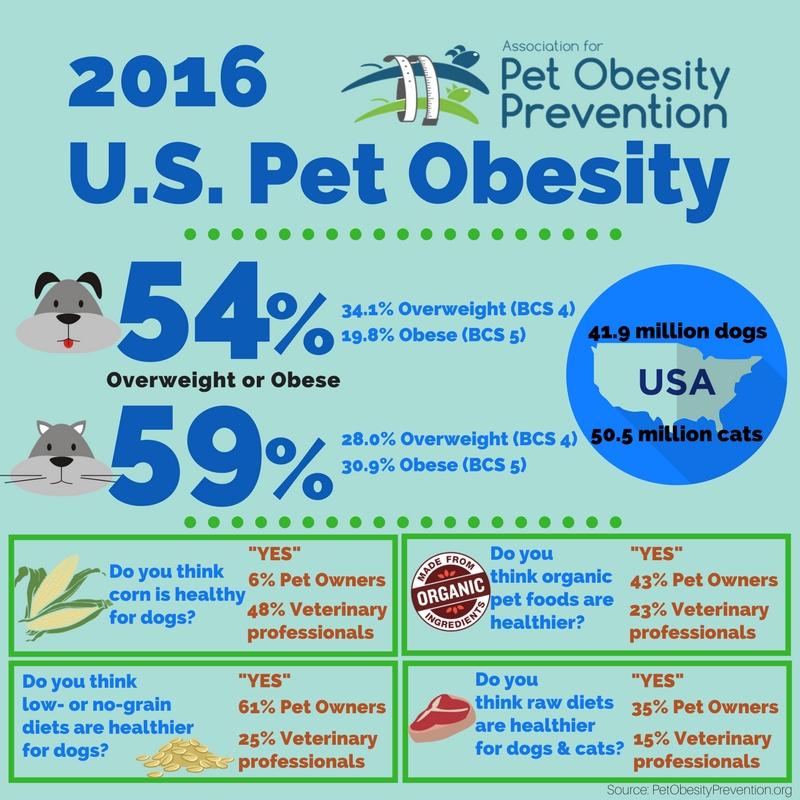 2016 U.S. Pet Obesity Infographic.jpg