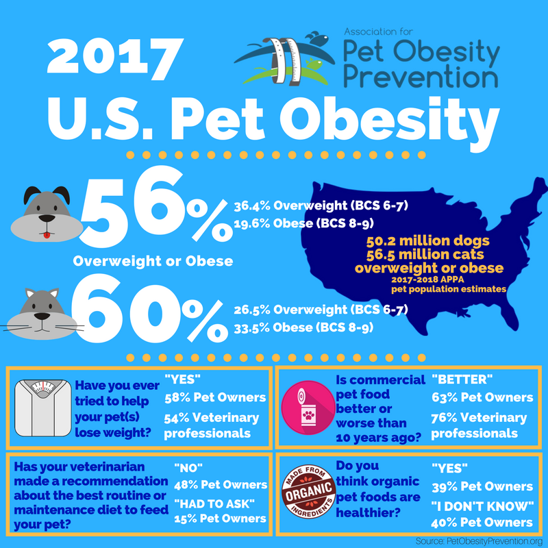 2017 U.S. Pet Obesity Infographic.png