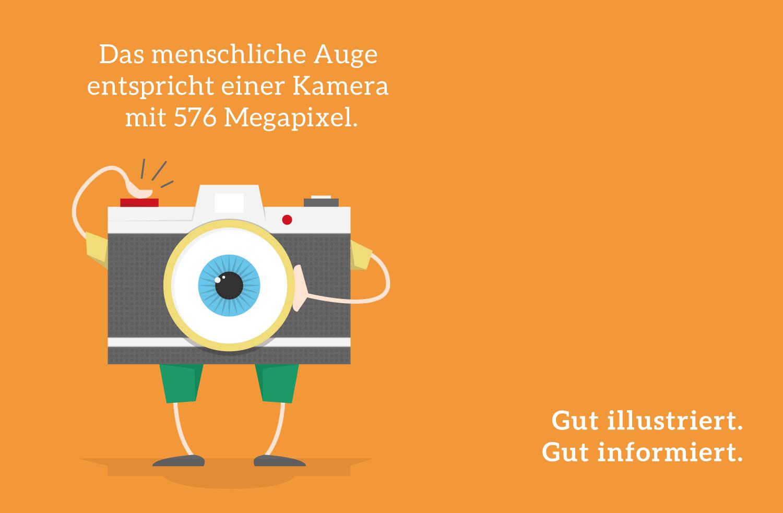 Mini Infografik über Auge von Elisabeth Deim