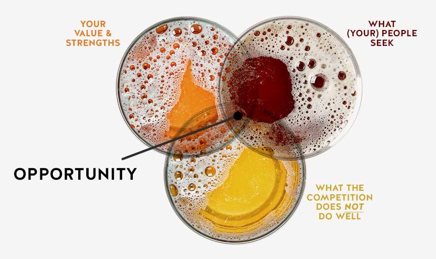 Craft Brewery Brand Strategy Venn Diagram