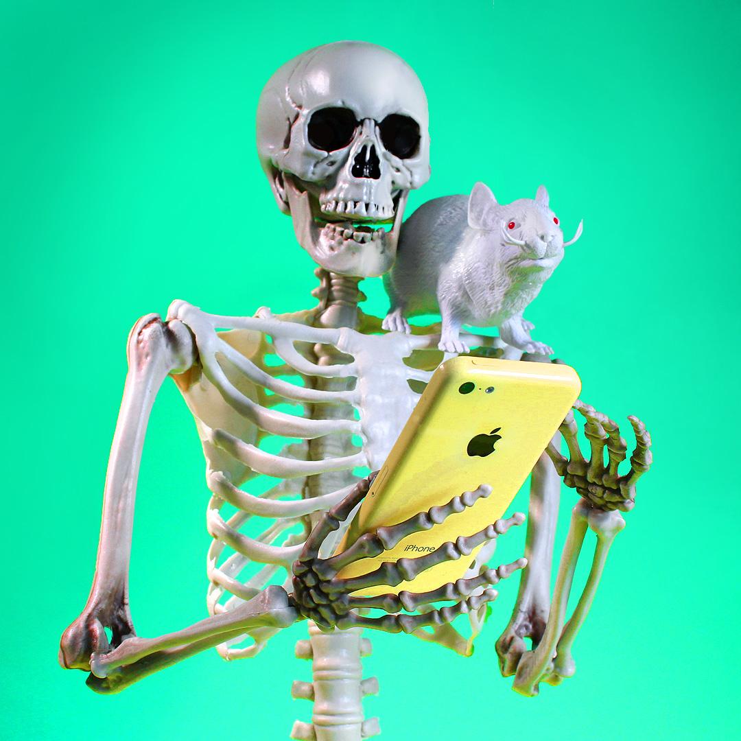 headexploie_skeleton.jpg