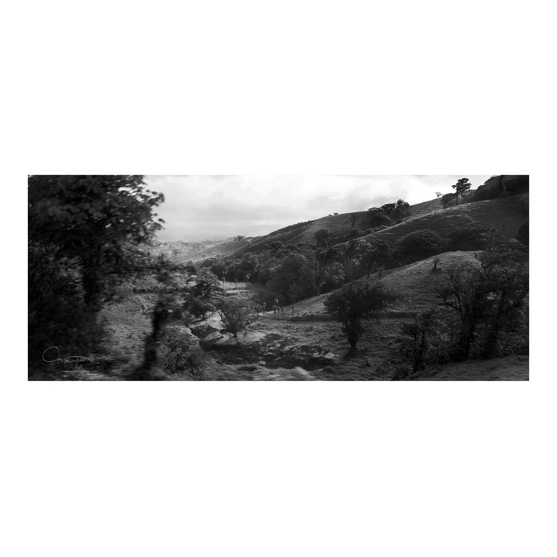landscape _22.jpg