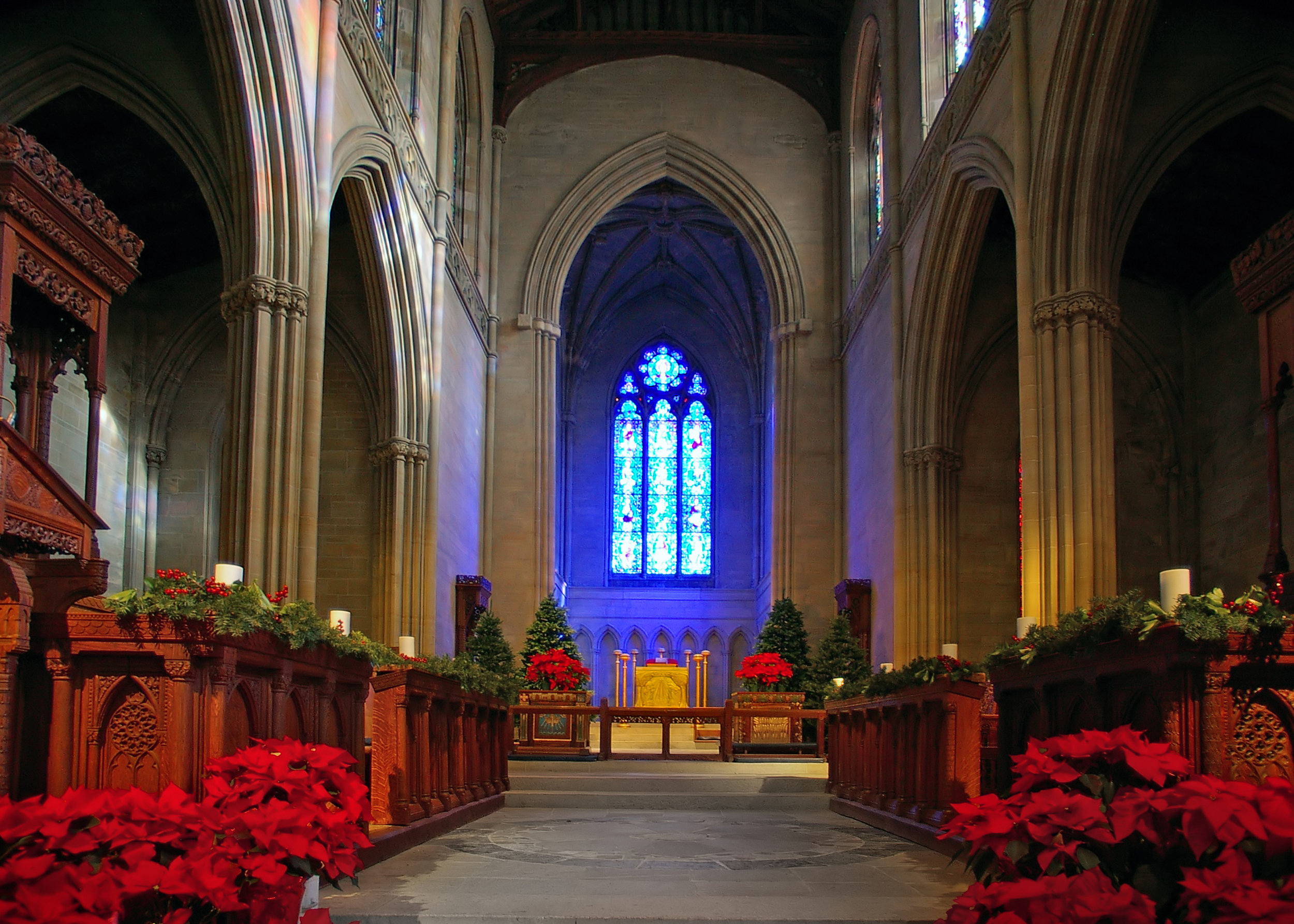 Bryn Athyn Cathedral's chancel, decorated for Christmas