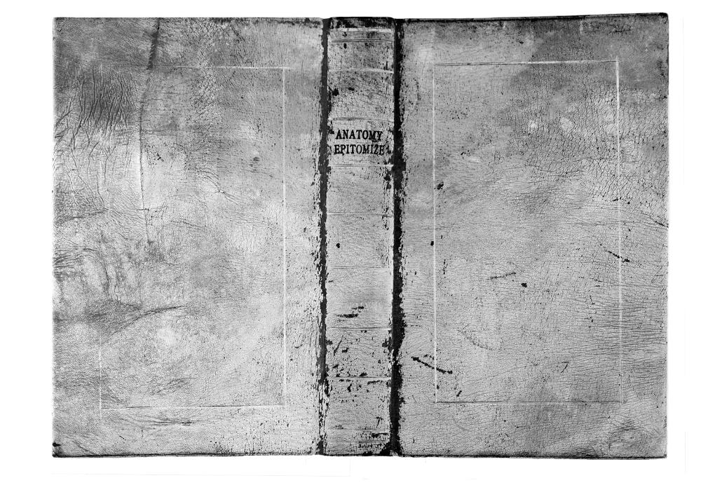 "Mary Beth Heffernan, Bound Volume, Platinum Palladium Print, 13""w x 9""w."