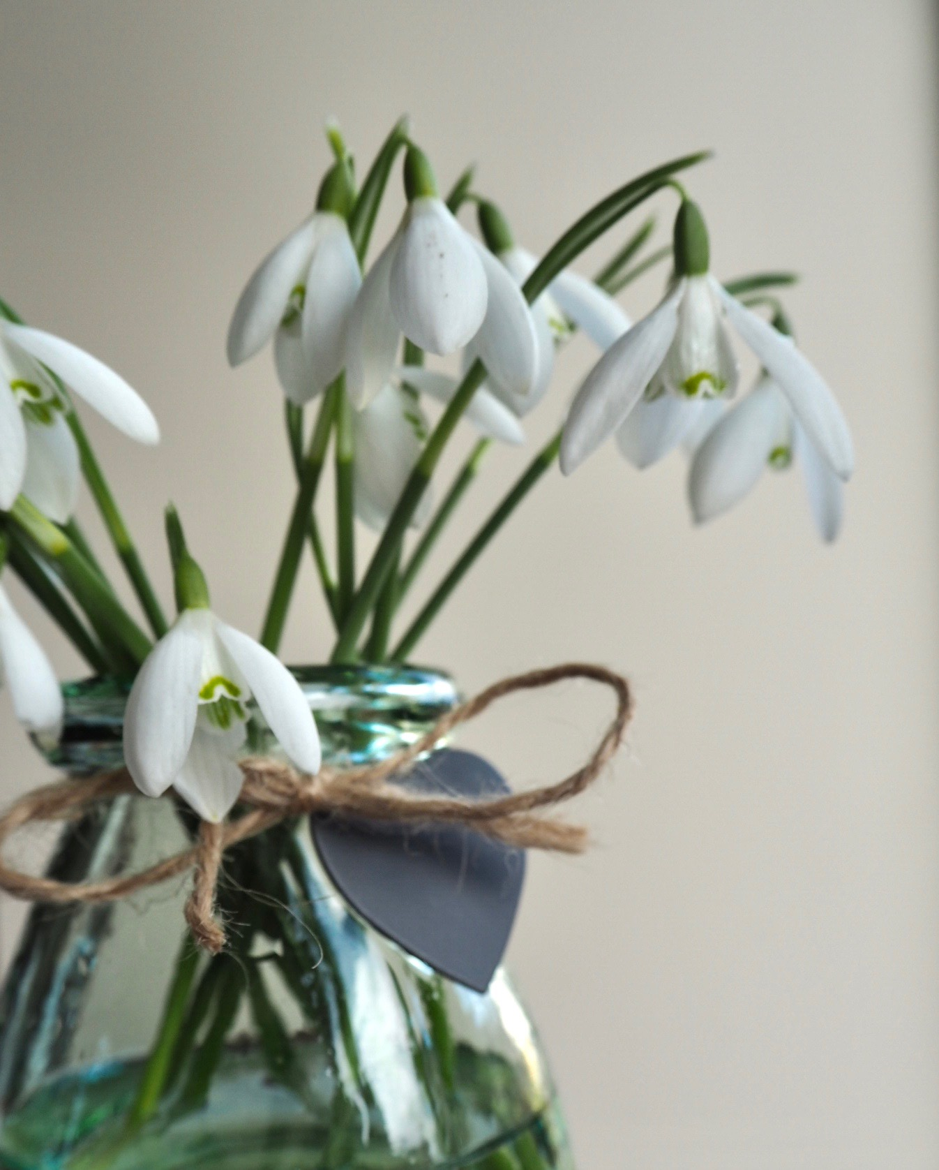 Collecting snowdrops, the smallest of things.