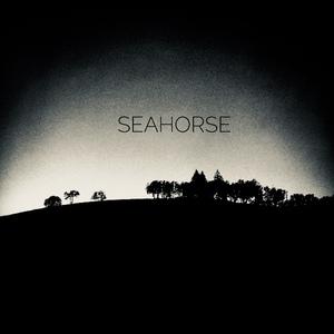 Seahorse.jpeg