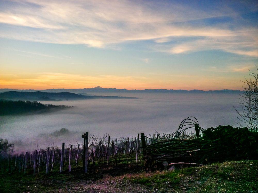 Fog and sunset.jpg