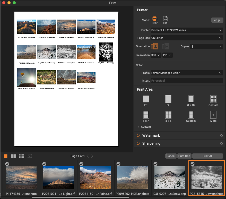 The new Print Module showing quick, one-click creation of contact sheets