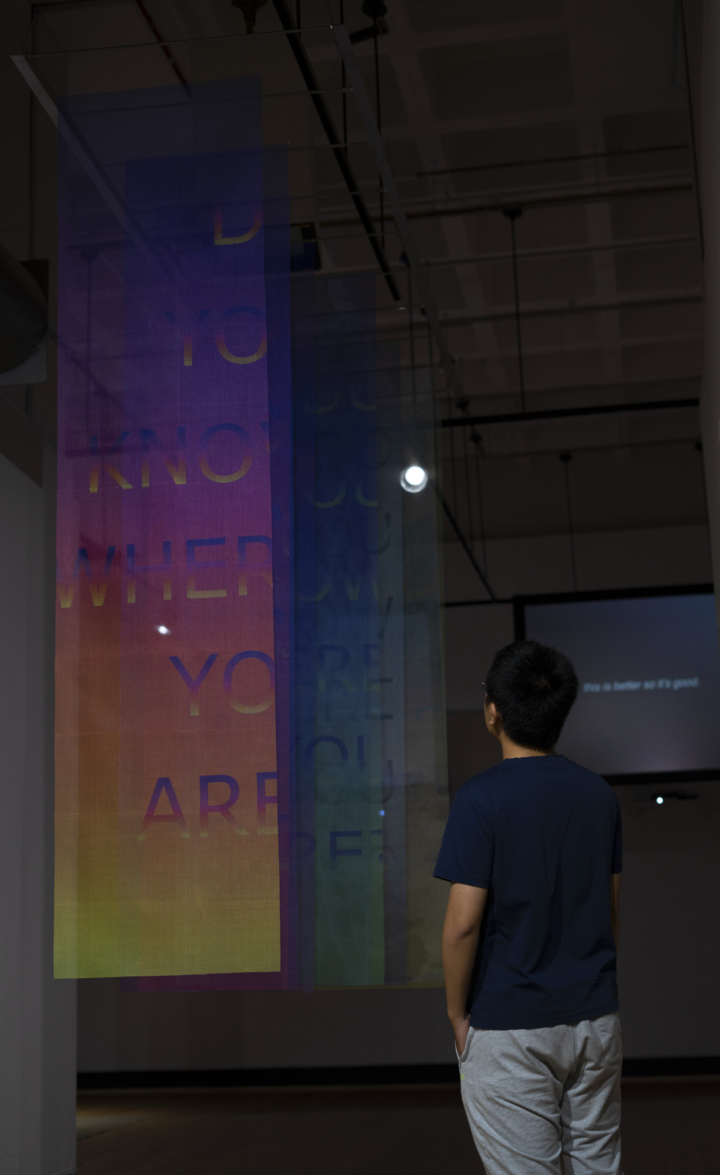 Do You Know Where You Are?  (Installation view). UV print on fiberglass screens. 96in x 36in x 120in. 2019