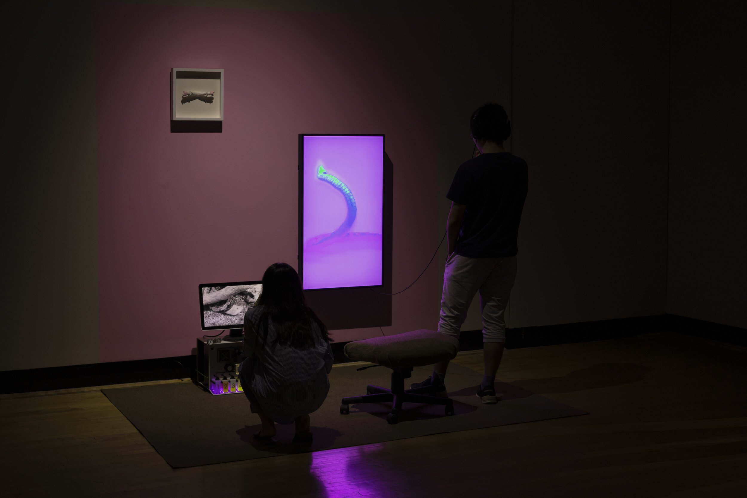 Pilgrimage to Hell and Back: An Ad for Spatial and Temporal Relocation  (Installation view). Single-channel video, headphones, monitor, extension cord, paint, carpet, seat, radiometer, plaster snake penis. Dimensions variable. 2019