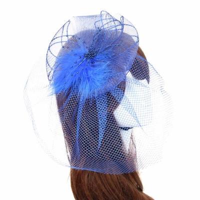 Blue Birdcage Veil