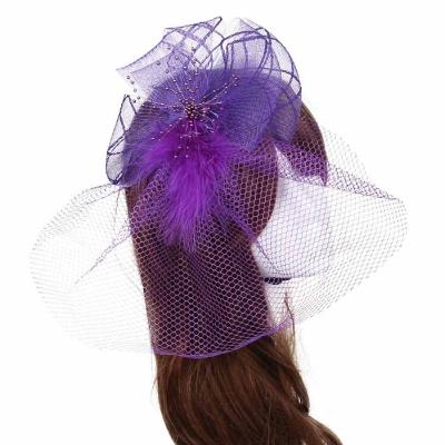 Purple Birdcage Veil