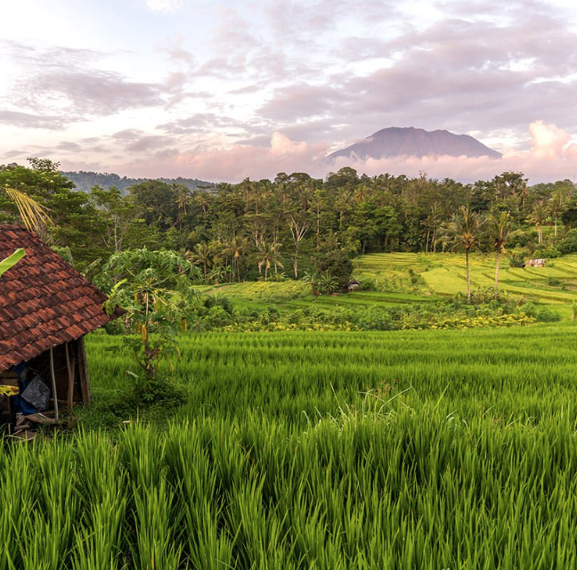 Sidemen rice terrace - Sidemen Village is located along the Klungkung and Besakih Temple route, roughly a two-hour drive from Ubud, and is a great spot for seeing beautiful rice paddies in East Bali.
