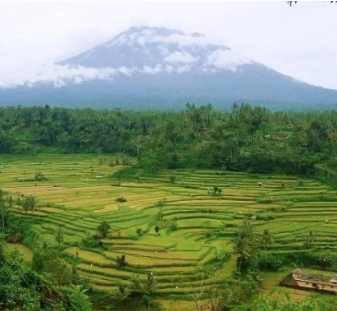 Redang - Neighbouring Sidemen, Rendang is another attractive mountain village. It's dominated by rice fields and rivers, and the local craftsmen make their living from both agriculture and stone carving.