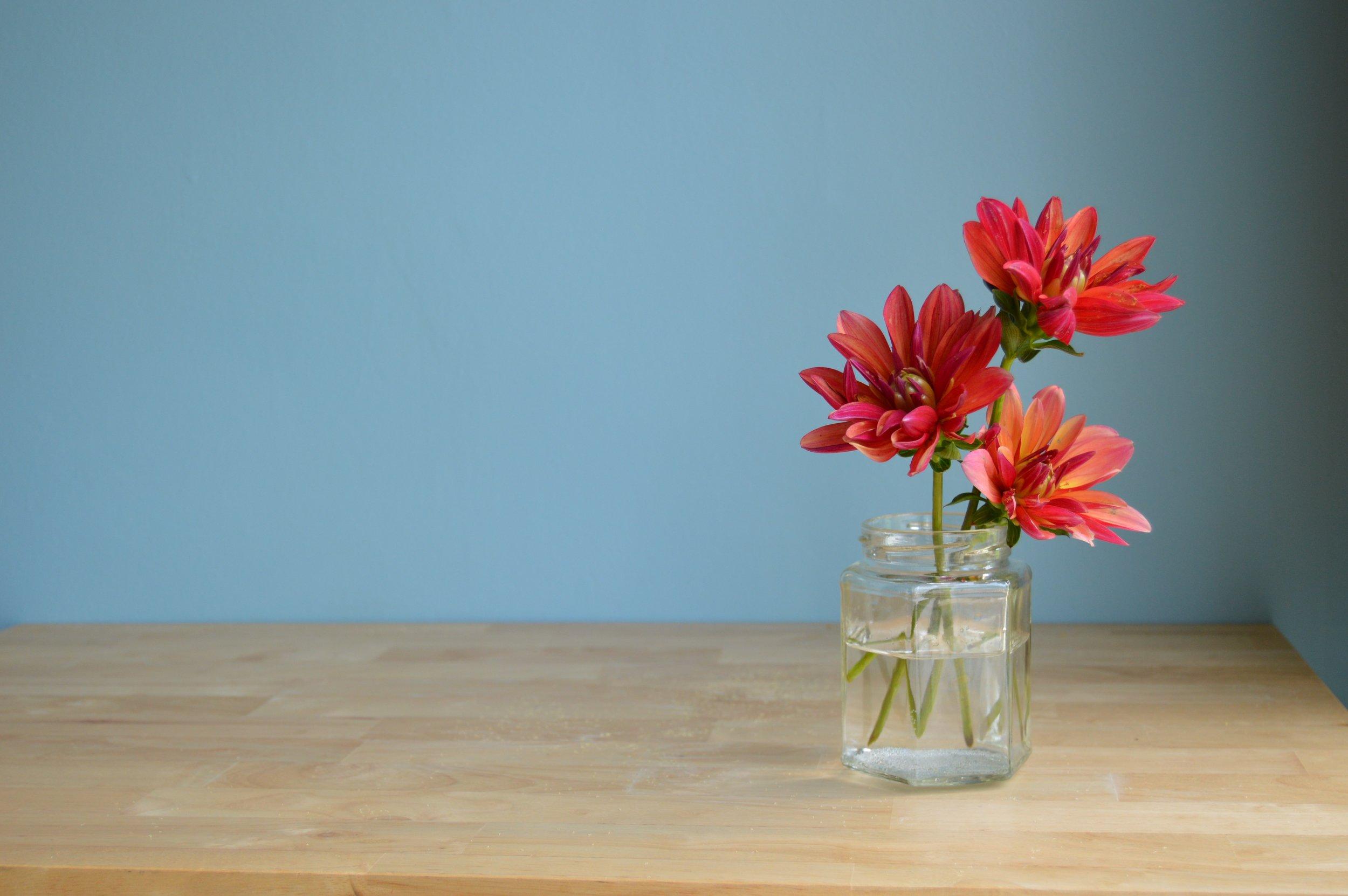 Flower Shop! - Our services:Customizable SubscriptionsWeddings & Special EventsFarmers Markets