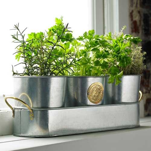 Stephanie Alexander Plant Pot Set $39