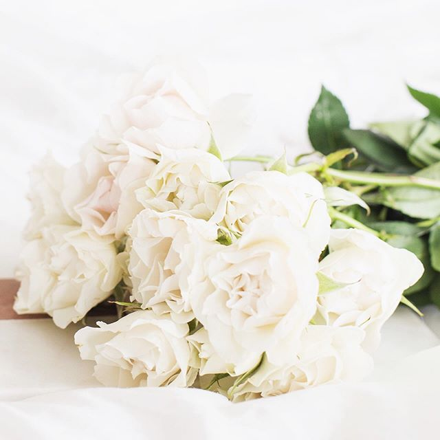 Fresh flowers are a great way to brighten up your home but unfortunately, they don't have a very long life span. Get the most out of your flowers with our top tips for keeping your flowers fresh for longer. Link in bio 👆🏻💐⠀ *⠀ *⠀ *⠀ *⠀ *⠀ #flowersoftheday #flowerstagram #flowerlovers #flowerbouquet #flowerphoto #flowerstyle #floweraddict #flowerdaily #smallbusiness #smallbiz #smallbusinesses #smallbusinesslife #smallbusinesssupport #bloggerlife #lifestyleblogger #bloggerslife #onlineboutique #springdecor #springblooms #springtime #instablooms #freshblooms #beautifulblooms #bloomsoftheday #bossbabes #bosswoman #australianmade #australianlife