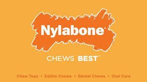 We at Nylabone believe all shelter dogs deserve a family who will love them, care for them, and keep them safe. That's why our mission is to give shelter dogs the behavioral tools they need to thrive in their forever homes. Nylabone Cares donates quality chew toys to shelter dogs so they can learn healthy chewing habits while feeling less anxious and stressed. We also educate new pet parents about how to maintain these healthy chewing habits—which is especially important for a dog who's adjusting to a new home.
