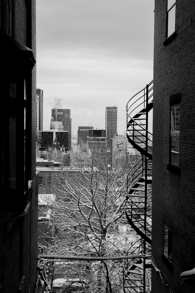 Montreal_blog_post_tall-6.jpg