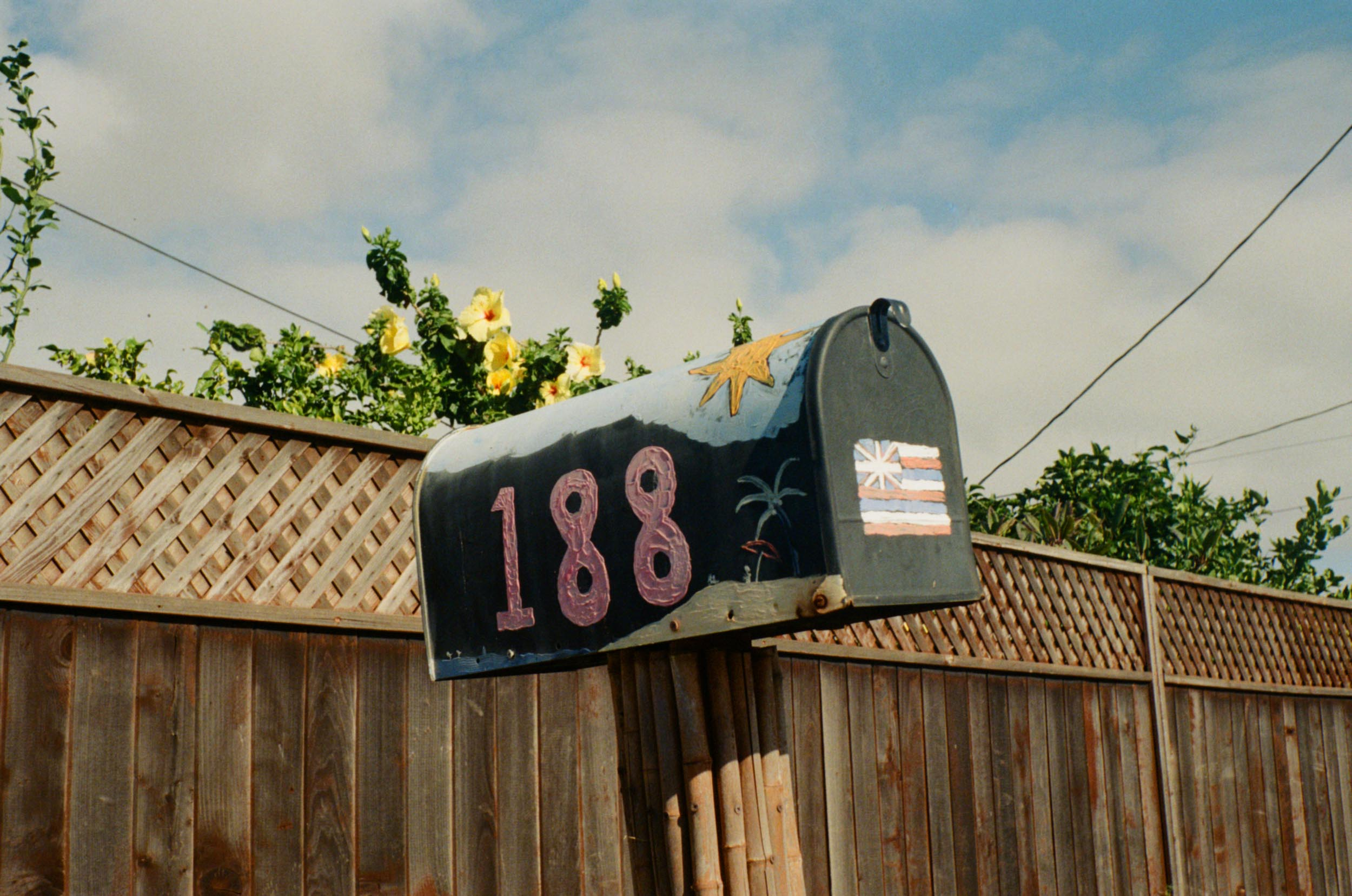 35mm_Maui-1.jpg