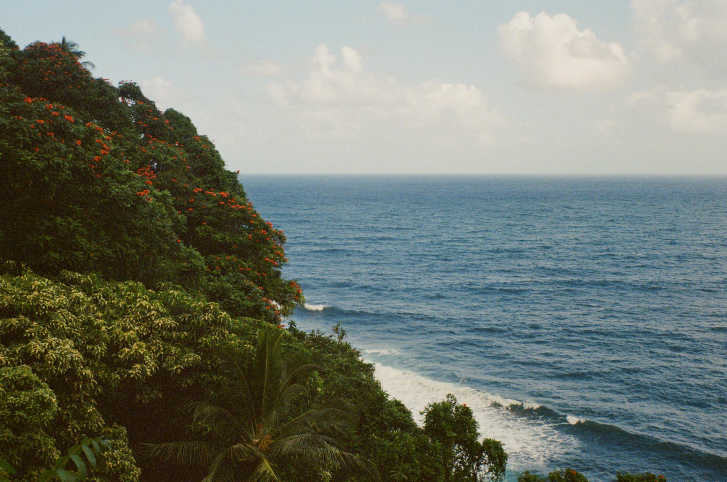 35mm_Maui-6.jpg