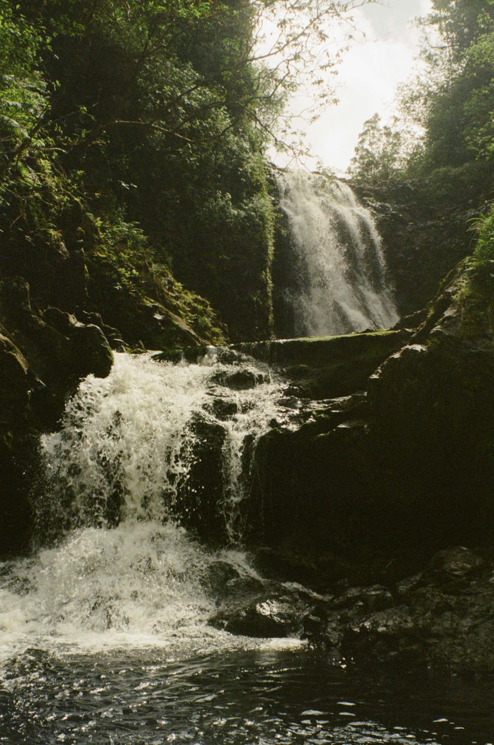 35mm_Maui-9.jpg