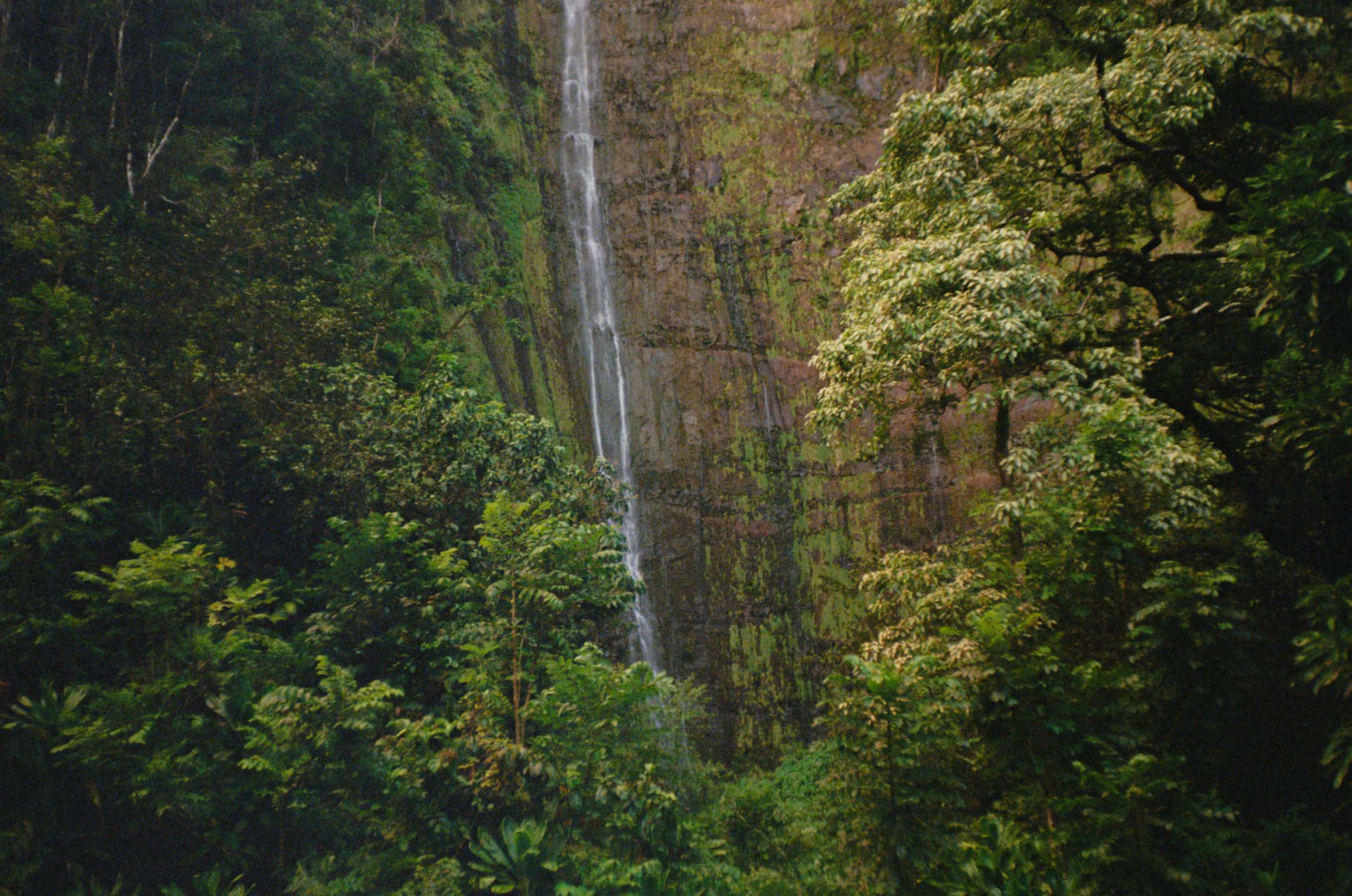 35mm_Maui-10.jpg