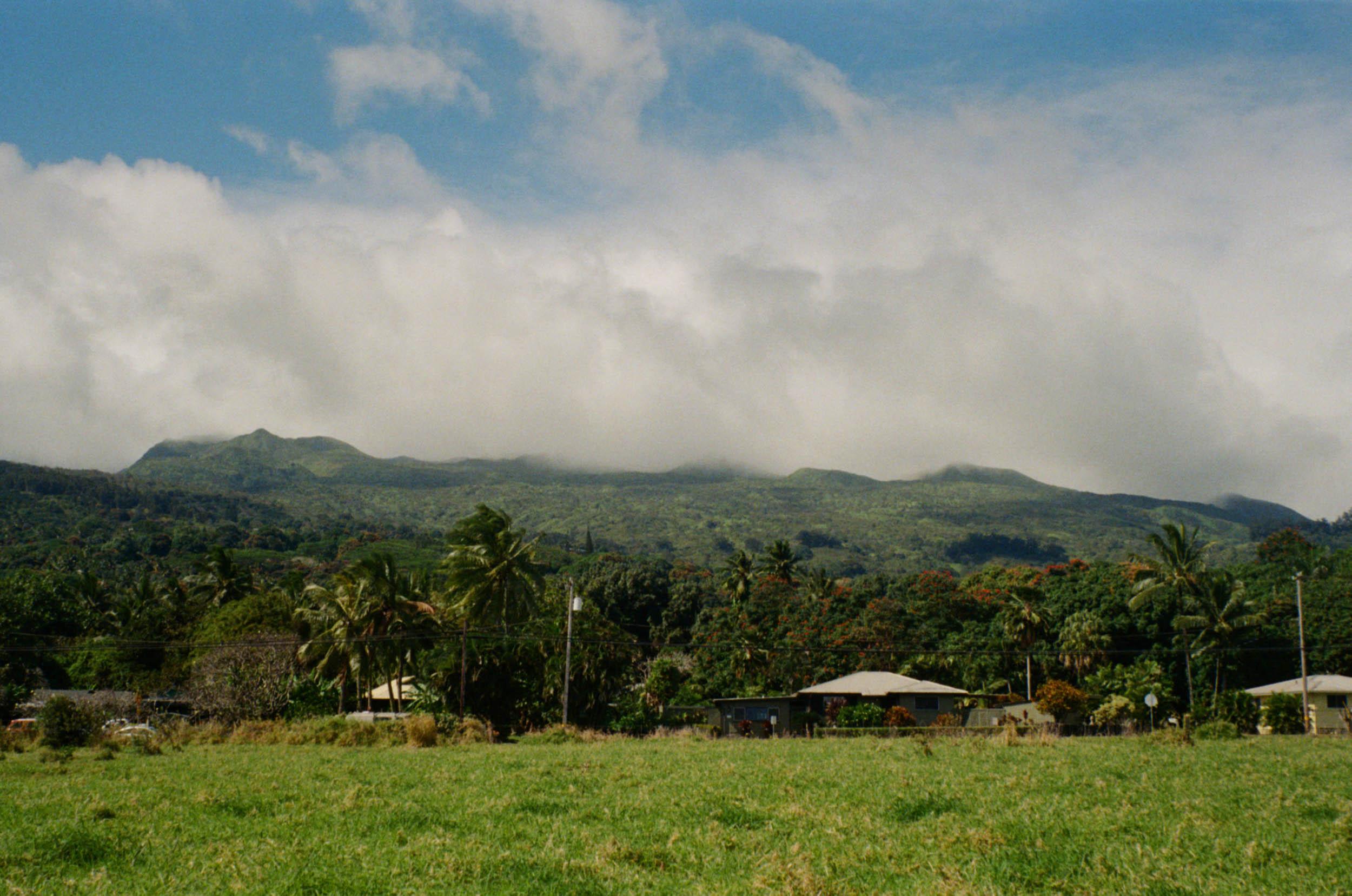 35mm_Maui-15.jpg
