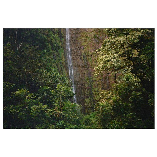 Stills from a few days off shooting interviews and B-roll sequences. Maui, late Jan 19'. Full set up on the blog. • #35mm #filmphotography #maui #hanamaui #haleakala #hawaii