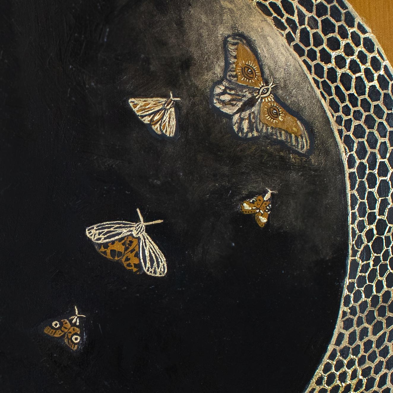 Awakening edited 10.1.18 moth crop.jpg
