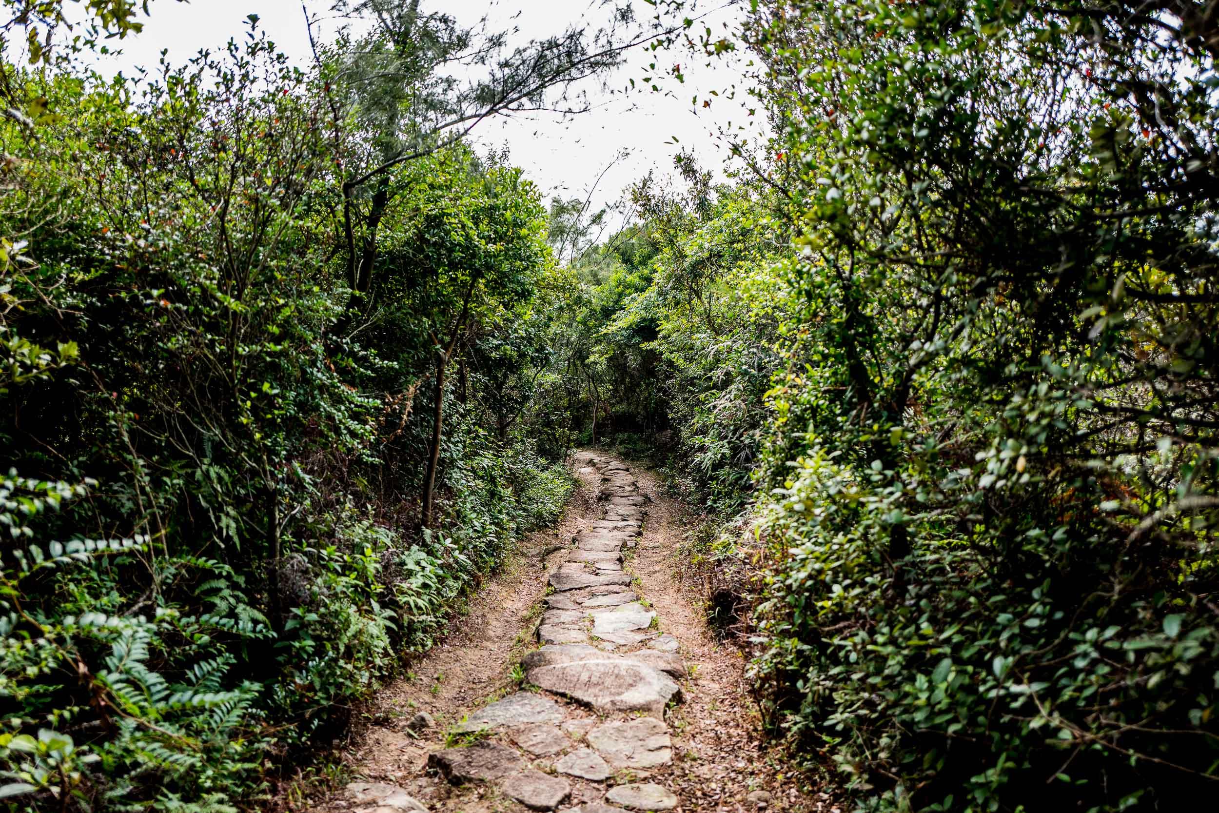 Pleasant Paths
