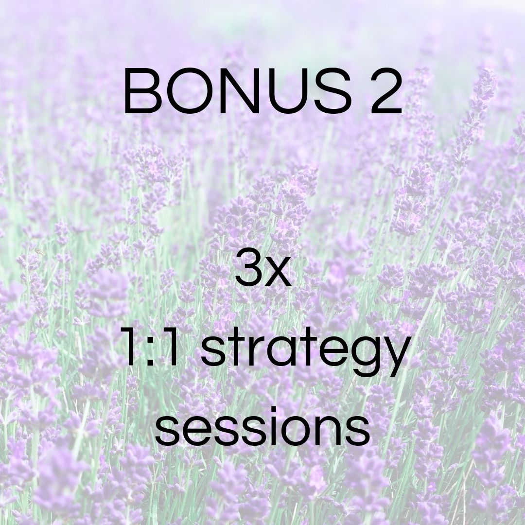 One-on-one strategy sessions - Let's use what you're learning in the course and make it work for YOUR business. I'll help you create a strategy + turn it into a step-by-step action plan.