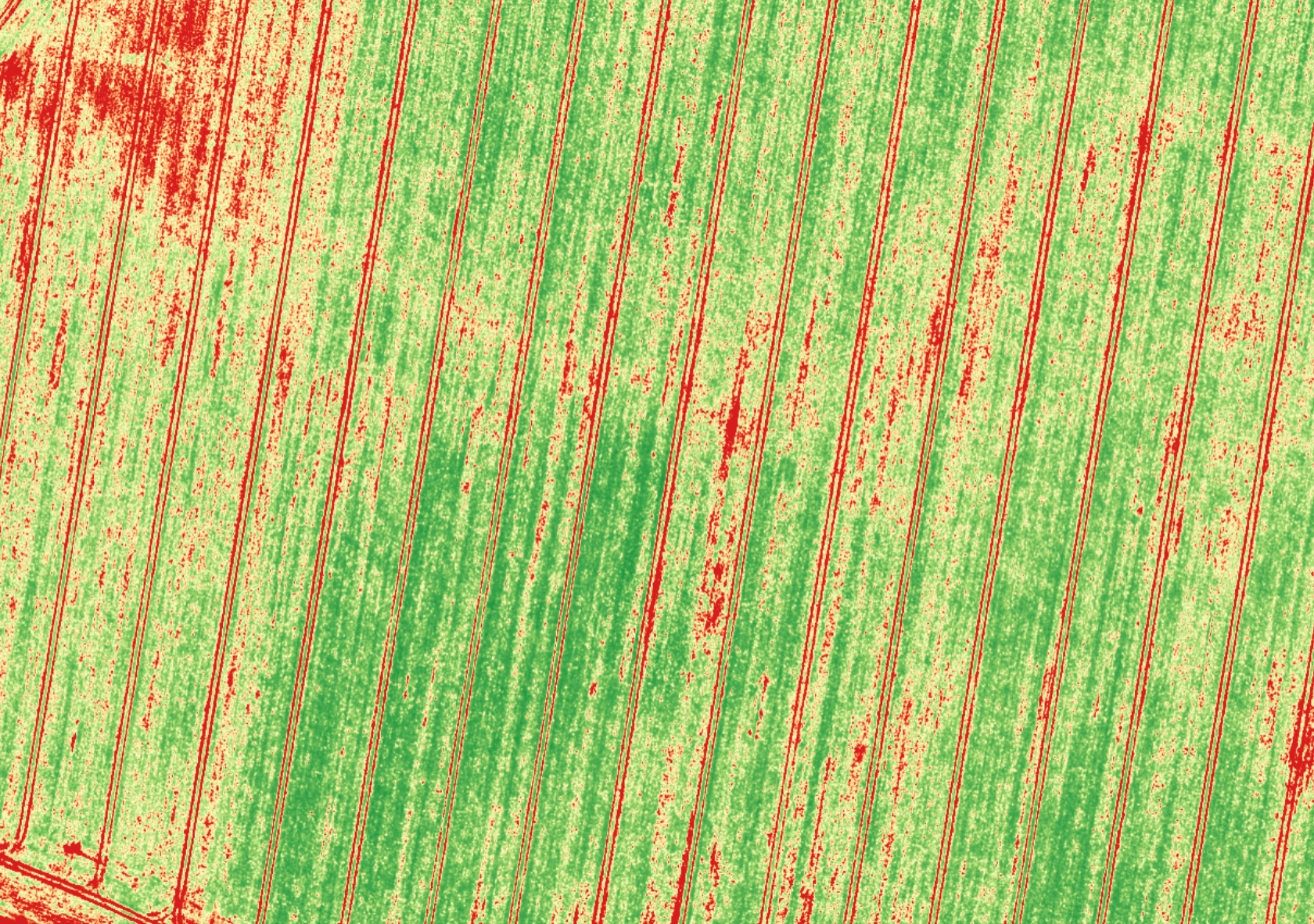 Hyperspectral image of crops