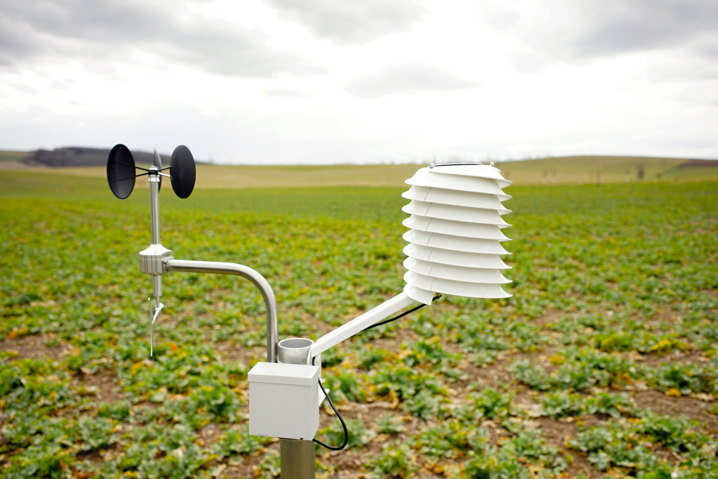 Agricultural weather station with a wind sensor, rain gauge and helical radiation shield.