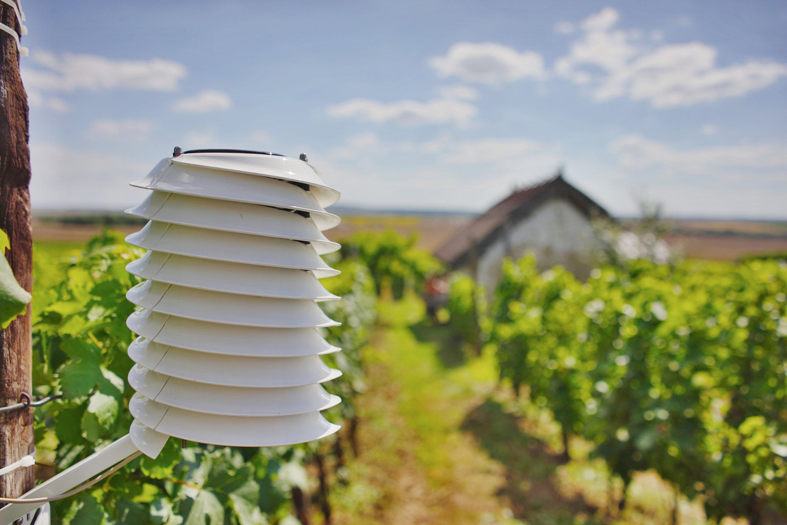 Weather station in a picturesque wine yard