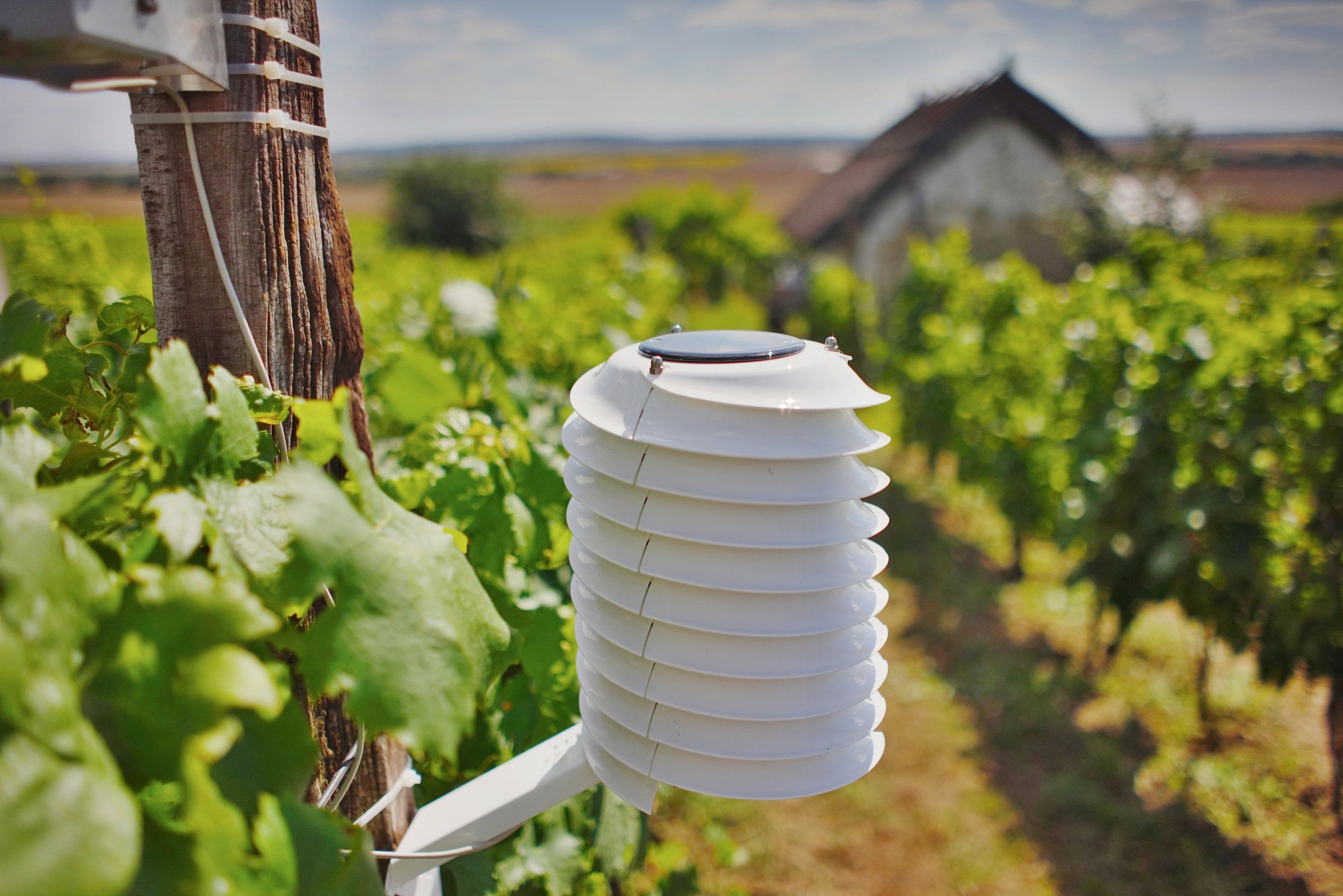 MeteoHelix Pro weather station for wine growing